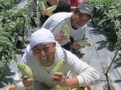 地元のこだわり農家さんの農産品を使っています